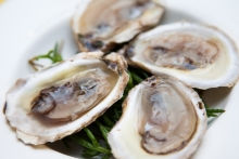 BeauSoleil oysters