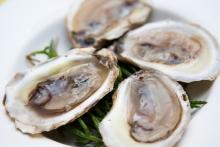 BeauSoleil oysters博索莱生蚝